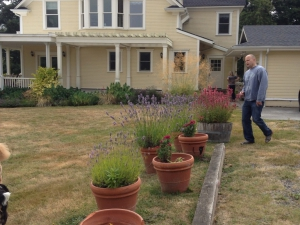 Plantings and House