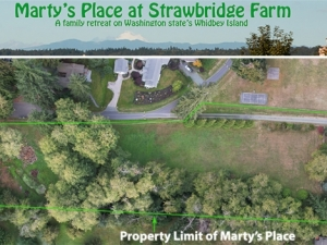 Marty's Place Grounds from Above