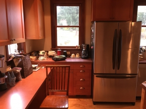 Refrigerator and Counter