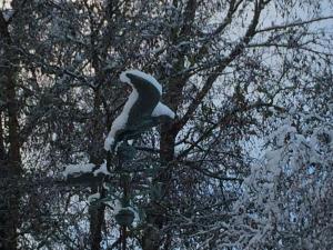 Weathervane In The Snow